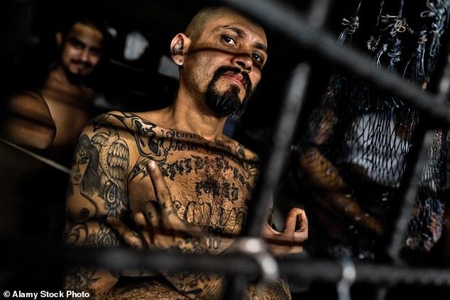 太流氓了吧!薩爾瓦多連續兩天沒有兇殺案,全國居家隔離後發布的影片竟然是 Gangster 所為?! 4
